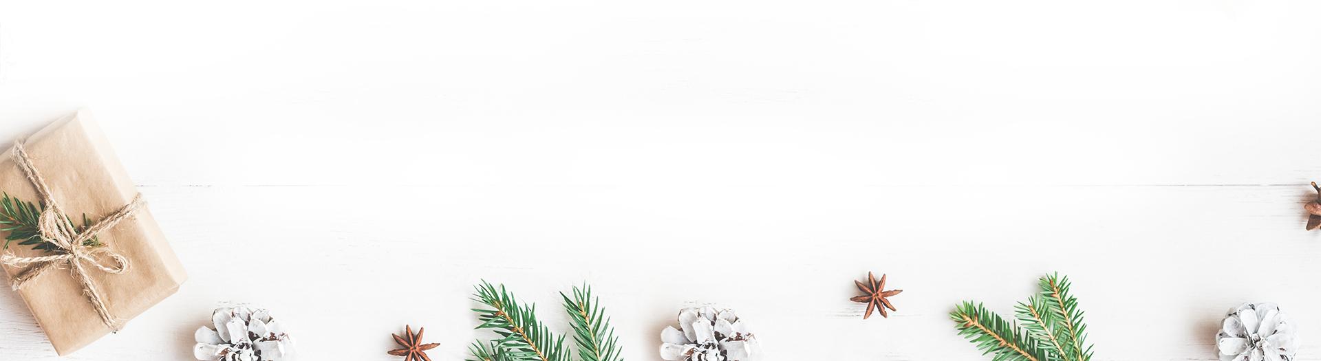 1_Holiday_Gift_Guide_Coordinator_Landing_Page_Banner_102218_1920_V2