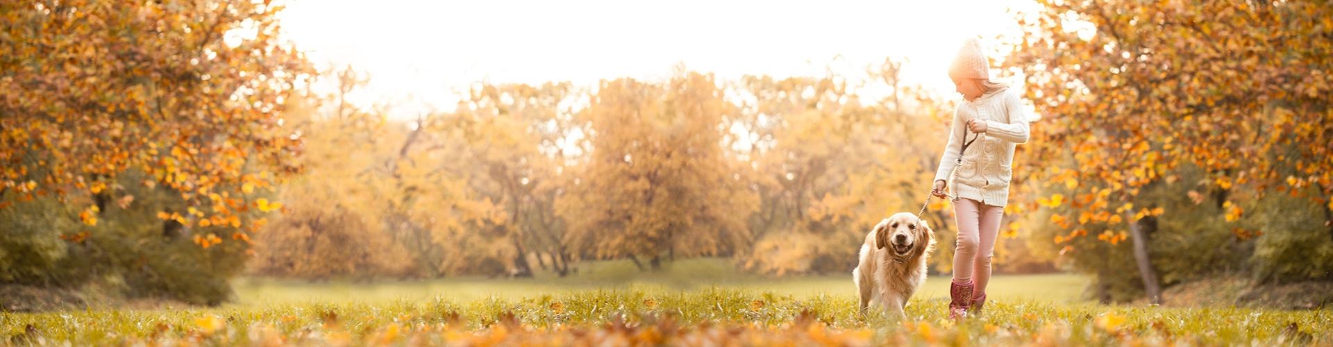 Fall_Homepage_Banner_fixed.jpg