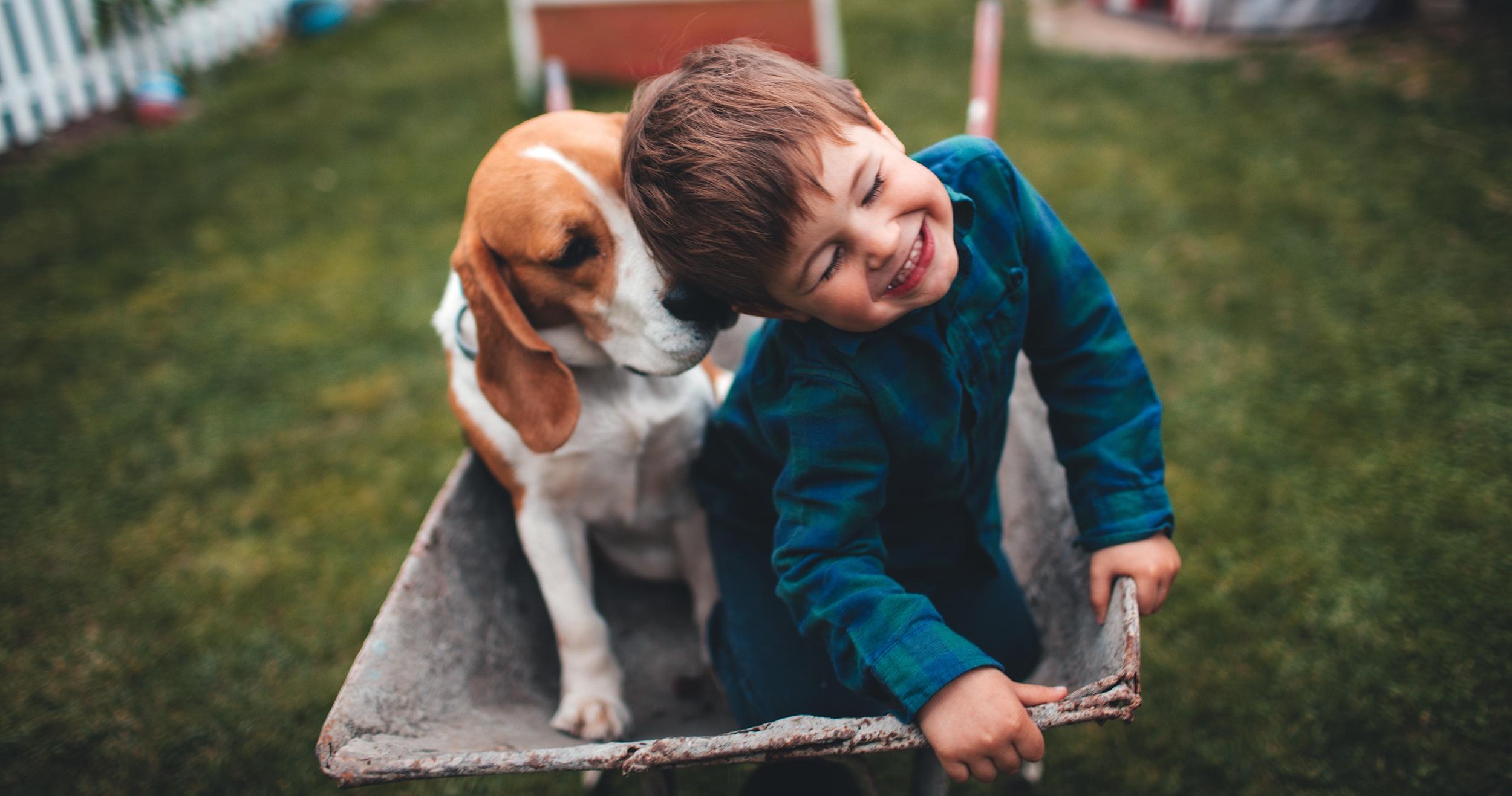 homepage-boy-dog.jpg